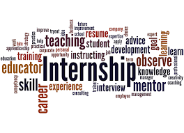 state government internships bureau