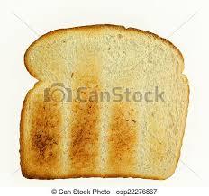 Toasted White Bread Slice Of White Toast On A White Background
