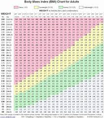 12 New Weight Loss Chart Pdf - Daphnemaia.com - Daphnemaia.com