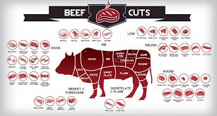 diffe cuts of beef