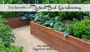 learn more about the benefits of raised bed gardening and start your own