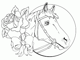 Free Wild Horse Coloring Pages Color Bros