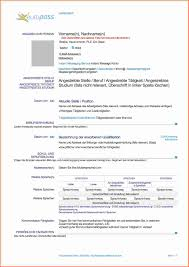 10 Lebenslauf Englisch Muster Transition Plan Templates