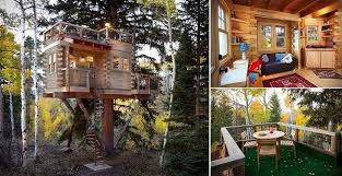 tree house interior designs. Contemporary Designs TreeHouseinColoradofb Throughout Tree House Interior Designs