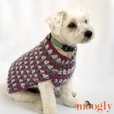 Crochet Dog Pattern Best Well Dressed Dog Coat Moogly