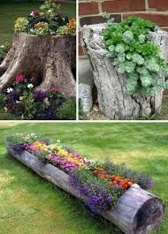 Small Picture 207 best Gardening images on Pinterest Garden ideas Gardening