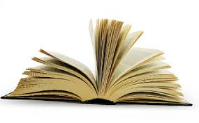 your website  how to write a business essay how to write a business essay