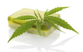 Image result for hemp skin care products