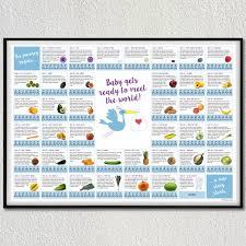 Pregnancy Callendar Pregnancy Calendar