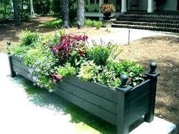 big outdoor plants extra large outdoor plant pots terrarium design