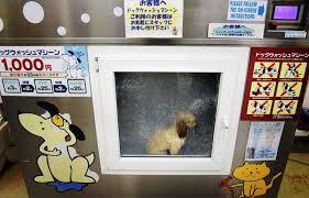 Dog Vending Machine New What In The World Insert Dog Turn On Machine Wash Rinse Dry