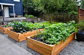 Small Picture small vegetable garden design backyard vegetable garden design