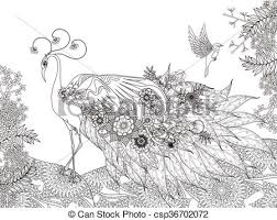 Peacock Coloring Pages For Adults Coloring Ideas