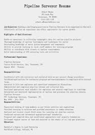 Resume Quantity Surveyor Resume