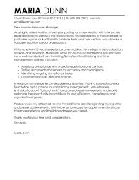 Leading Professional Auditor Cover Letter Examples Resources