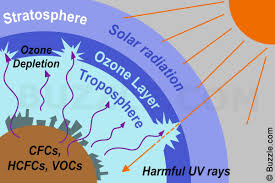 causes and effects of ozone layer depletion that are painfully true causes of ozone depletion