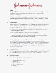 It Resume Examples Adorable Example It Resume Professional Template 60 Sample It Resume Best