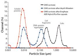 Anion Exchange Chromatographic Clarificationbioprocess