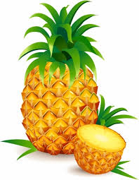 pineapple drawing color. pin realistic clipart pineapple #3 drawing color
