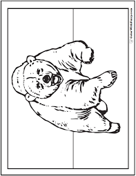 Small Picture Bear Coloring Pages Grizzlies Koalas Pandas Polar and Teddy