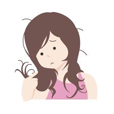 「傷んだ髪」の画像検索結果