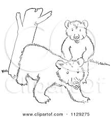 Small Picture Cartoon Clipart Of Outlined Playful Bear Cubs By A Tree Trunk
