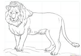 lion drawing. Perfect Drawing How To Draw A Lion Inside Lion Drawing O
