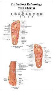 Tui Na Foot Reflexology Wall Chart English Chinese