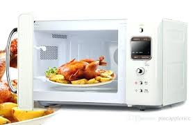 countertop induction oven reviews