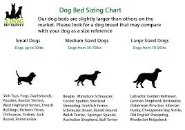 Pet Bed Size Chart Dog Beds For Old Dogs Trendcrate
