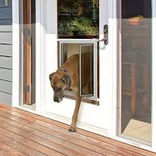 plexidor dog door key
