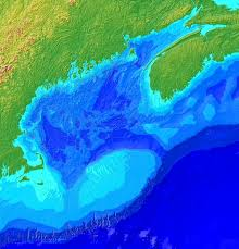 Gulf Of Maine Chart Why Marine Life Is So Diverse In The Gulf Of Maine