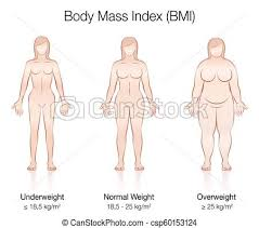 Underweight Normal Overweight Obese Chart Body Mass Index Bmi Female Body Thin Fat Normal