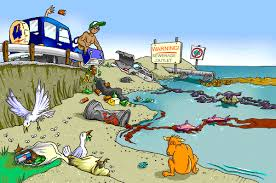 water pollution essay important things you should include in your water pollution essay