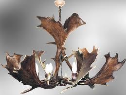 fallow deer antler chandelier 6 lights 1