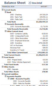 Simple Accounts And Financial Reports With Netsuite Saas