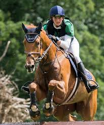 Sophie Richards takes bronze at Le Lion d'Angers in France | Irish Eventing  Times
