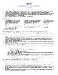Entry Level Project Manager Resume Samples To Inspire You Vntask Com