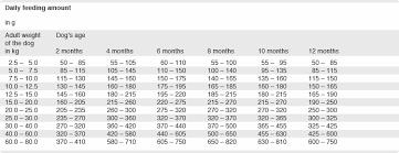 Puppy Feeding Schedule Chart Platinum Feeding Guidelines