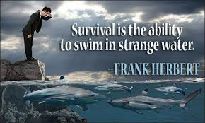 Survival Quotes Amazing Survival Quotes