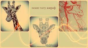 эскизы тату жираф интересные рисунки для переноса на тело и
