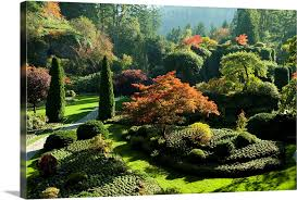 trees in butchart gardens victoria