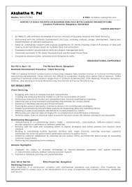 Business Systems Analyst Resume Sample Stunning Sample System Analyst Resume Colbroco