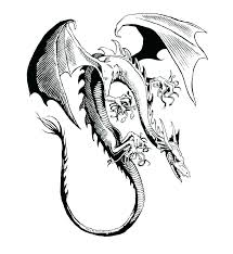 Realistic Dragon Coloring Pages Dragon Coloring Pages For Adults