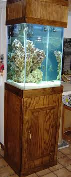 Labyrinth Fish Tank 124 Best Fishin Around Images On Pinterest Tetra Fish Tropical