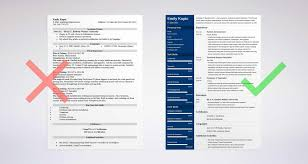 20 Resume Profile Examples How To Write A Professional Profile