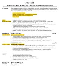The Best Resume Format Reverse Chronological Functional Combo
