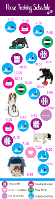 Puppy House Training Chart How To Potty Train A Puppy Tips On Training For Successful