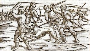 mad dog bites and englishmen early modern remedies for middle ages rabid dog