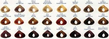 Loreal Excellence Creme Hair Color Chart In 2019 Brown